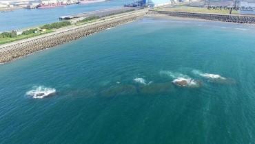 Tubes géotextiles en tant que digues immergées pour la protection du port, Taiwan
