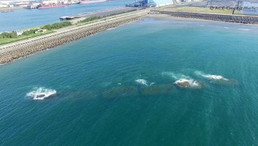 Geotextile Tubes as Submerged Breakwaters for Harbor Protection, Taichung, Taiwan