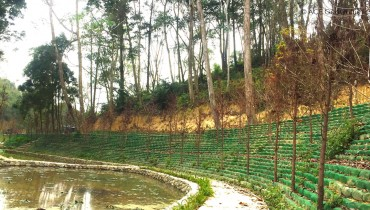 Shihmen Farm Pond Rehabilitation Project in Miaoli County, Taiwan